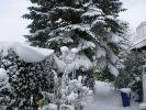 Winter 2012 - 2013